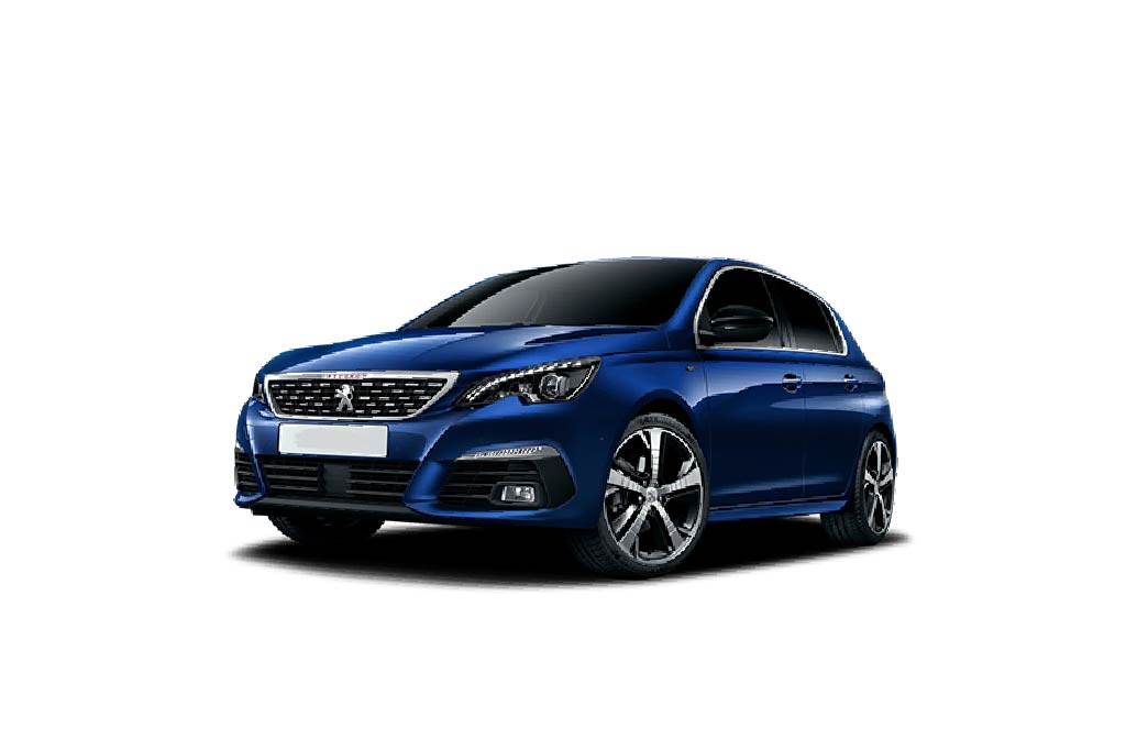 Peugeot 308 Groupe Michel